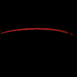conesprit Logo